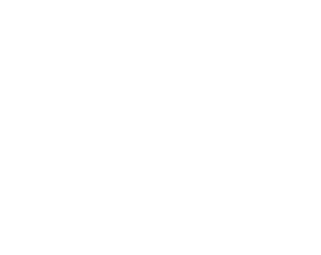 Pozitron Plus White Logo